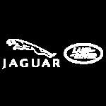 Jaguar-carbone